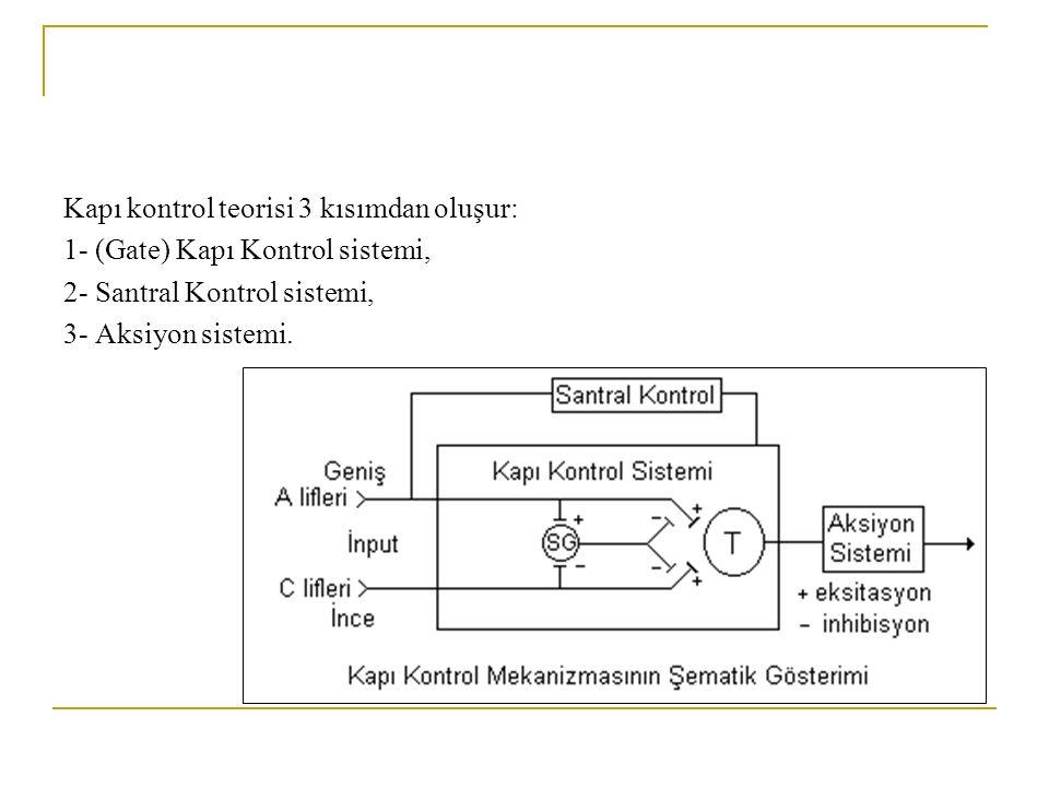 Kapı kontrol teorisi 3 kısımdan oluşur: