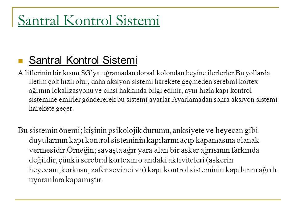Santral Kontrol Sistemi