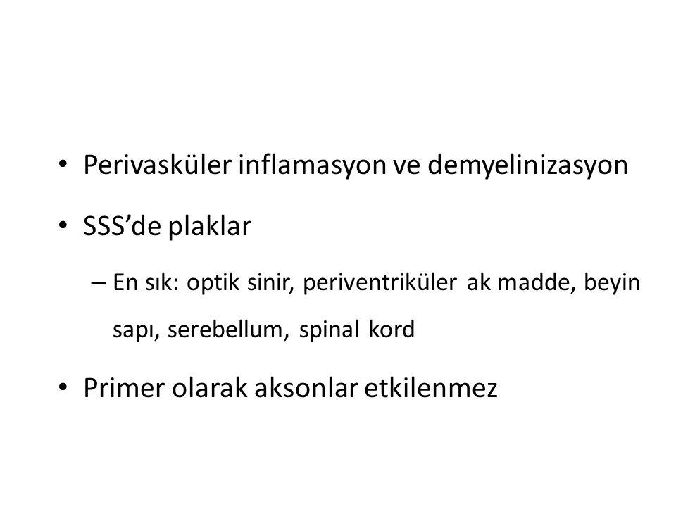 Perivasküler inflamasyon ve demyelinizasyon SSS'de plaklar