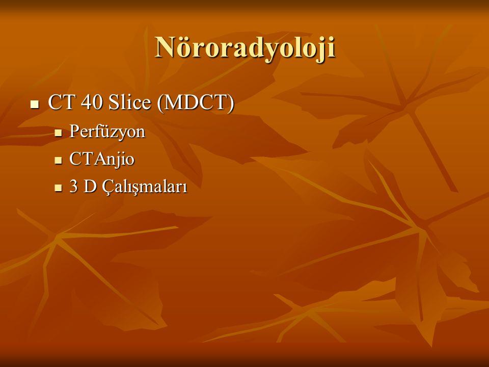 Nöroradyoloji CT 40 Slice (MDCT) Perfüzyon CTAnjio 3 D Çalışmaları