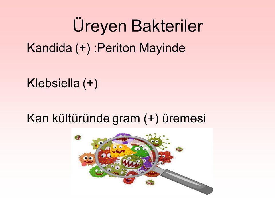 Üreyen Bakteriler Kandida (+) :Periton Mayinde Klebsiella (+)