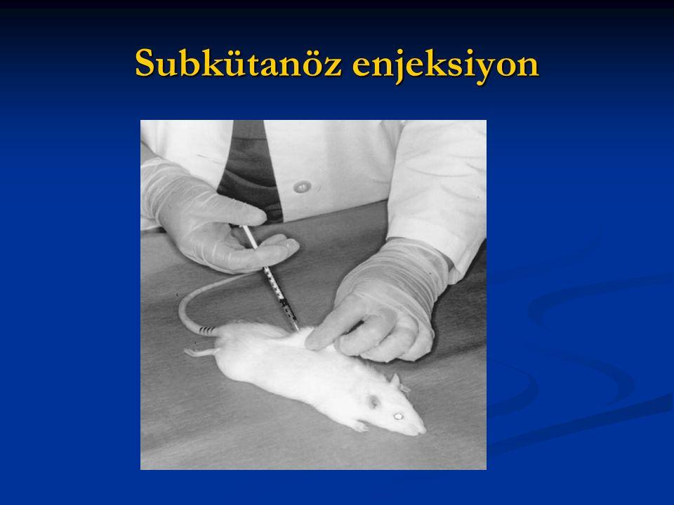 Subkütanöz enjeksiyon