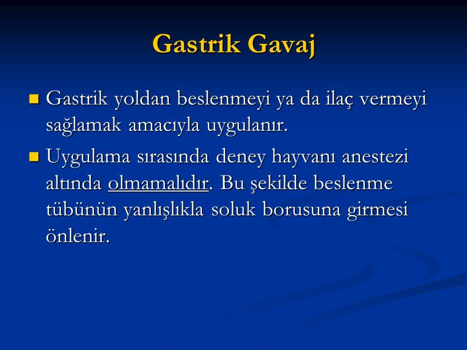Gastrik Gavaj Gastrik yoldan beslenmeyi ya da ilaç vermeyi sağlamak amacıyla uygulanır.