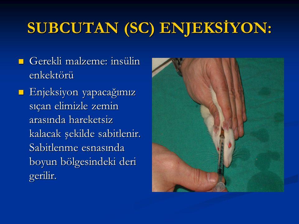 SUBCUTAN (SC) ENJEKSİYON: