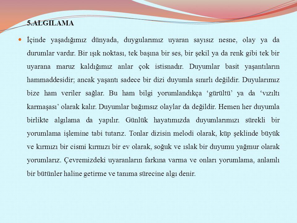 5.ALGILAMA