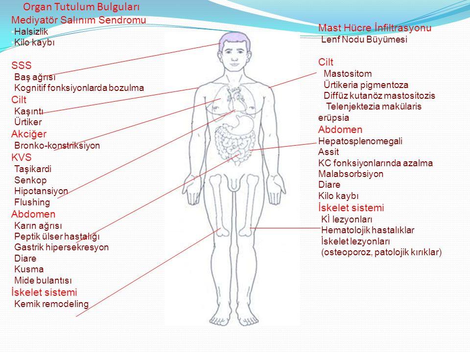 Organ Tutulum Bulguları