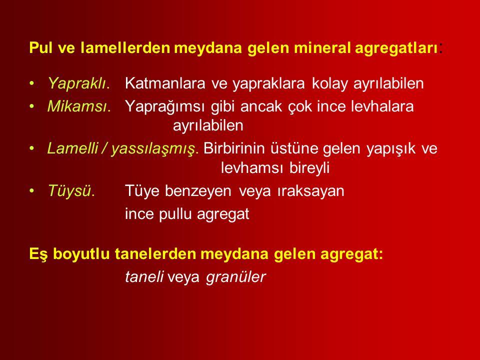 Pul ve lamellerden meydana gelen mineral agregatları: