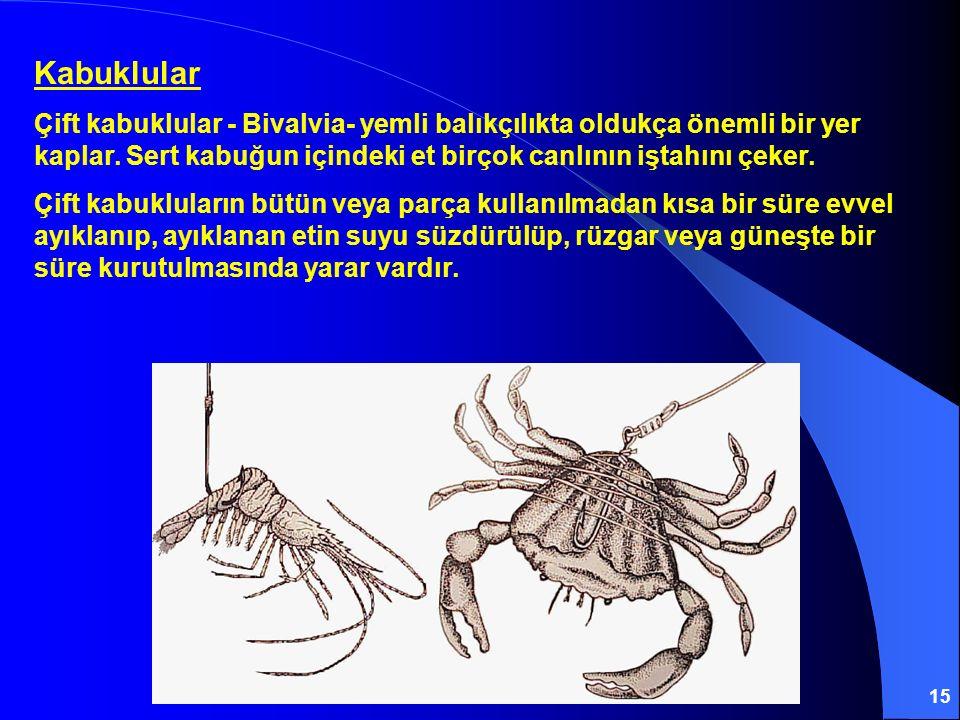 Kabuklular Çift kabuklular - Bivalvia- yemli balıkçılıkta oldukça önemli bir yer kaplar. Sert kabuğun içindeki et birçok canlının iştahını çeker.