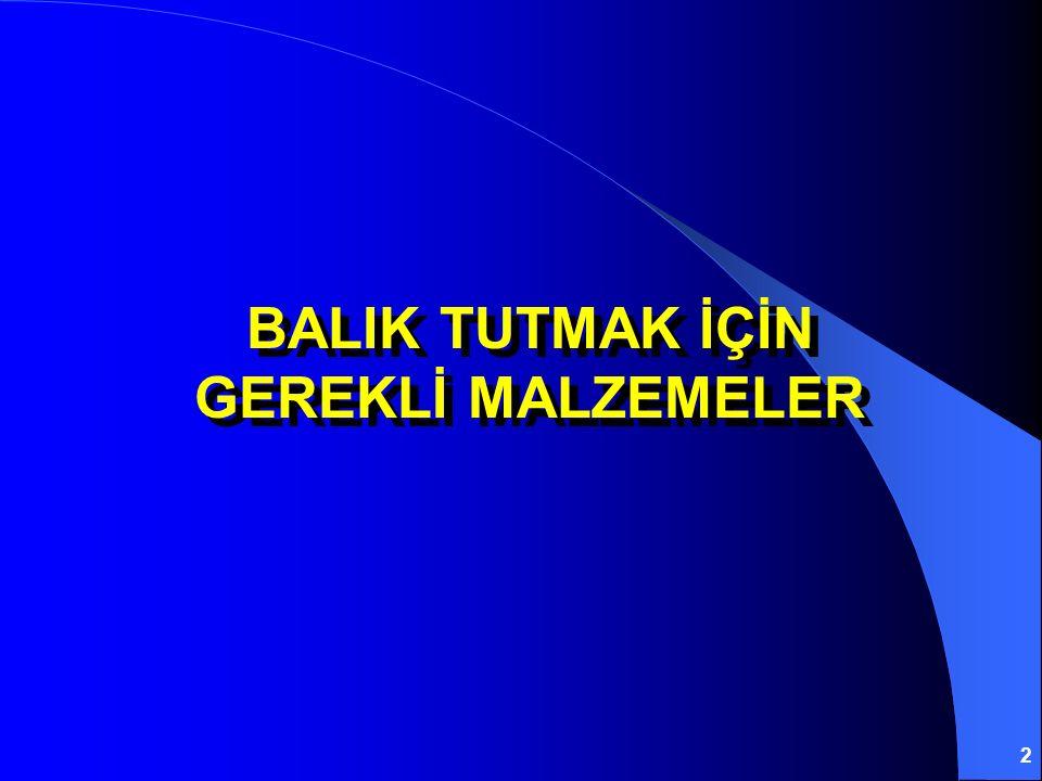 BALIK TUTMAK İÇİN GEREKLİ MALZEMELER