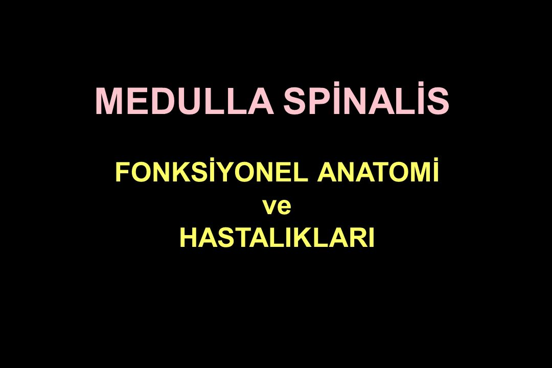 MEDULLA SPİNALİS FONKSİYONEL ANATOMİ ve HASTALIKLARI