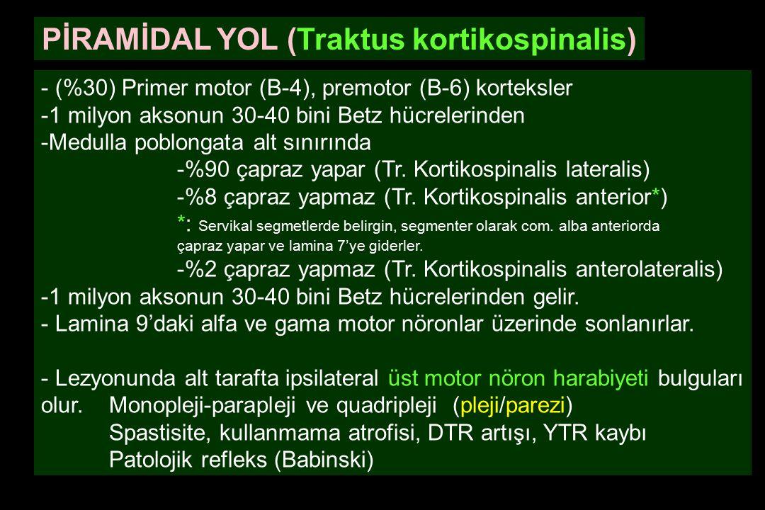 PİRAMİDAL YOL (Traktus kortikospinalis)