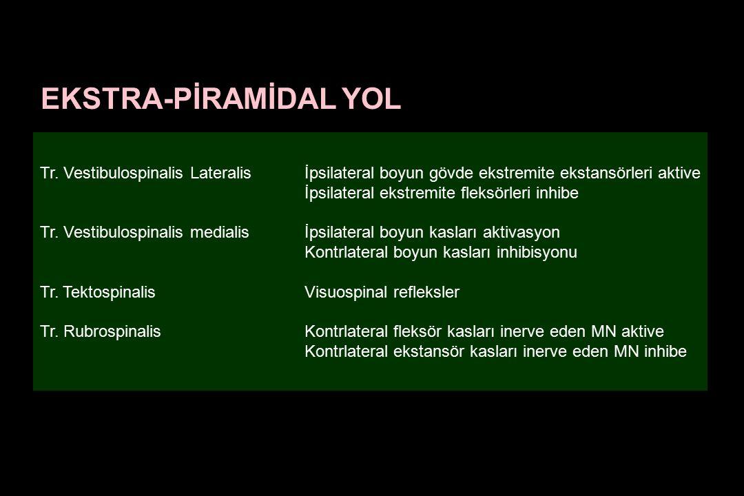 EKSTRA-PİRAMİDAL YOL Tr. Vestibulospinalis Lateralis İpsilateral boyun gövde ekstremite ekstansörleri aktive.