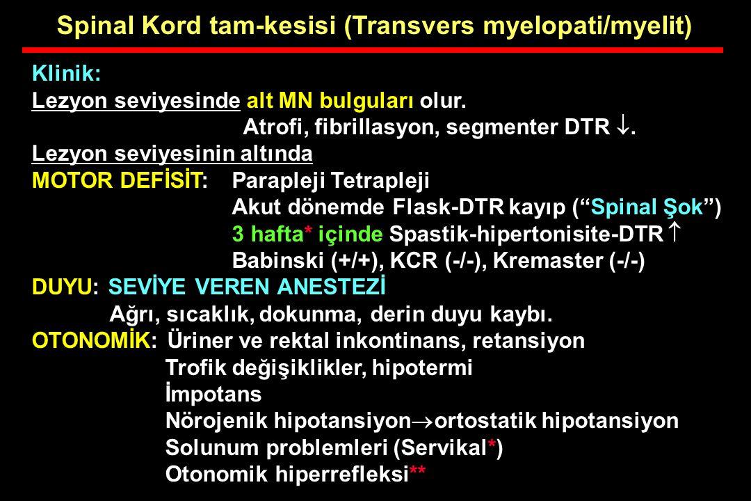 Spinal Kord tam-kesisi (Transvers myelopati/myelit)