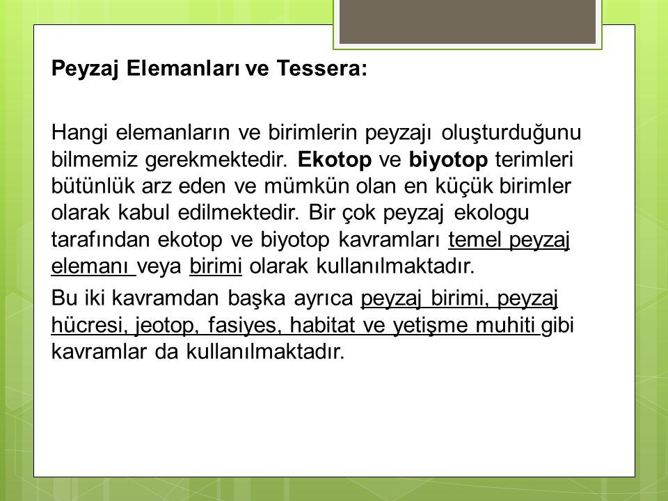 Peyzaj Elemanları ve Tessera: Hangi elemanların ve birimlerin peyzajı oluşturduğunu bilmemiz gerekmektedir.