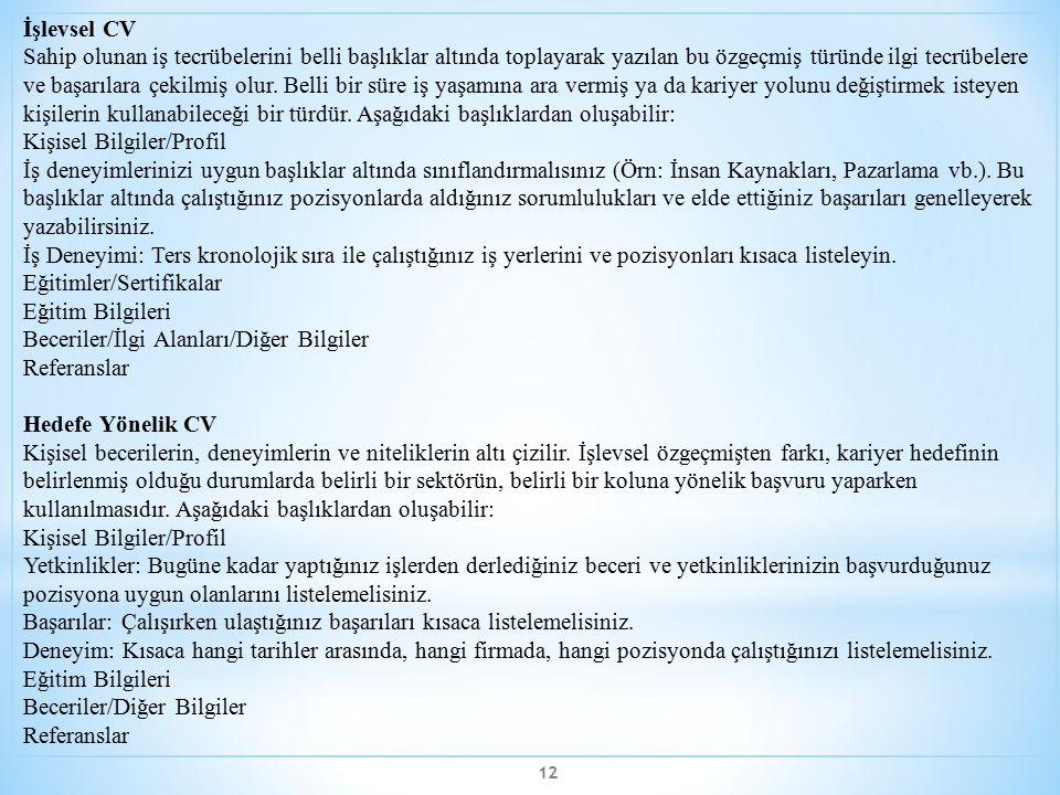 İşlevsel CV