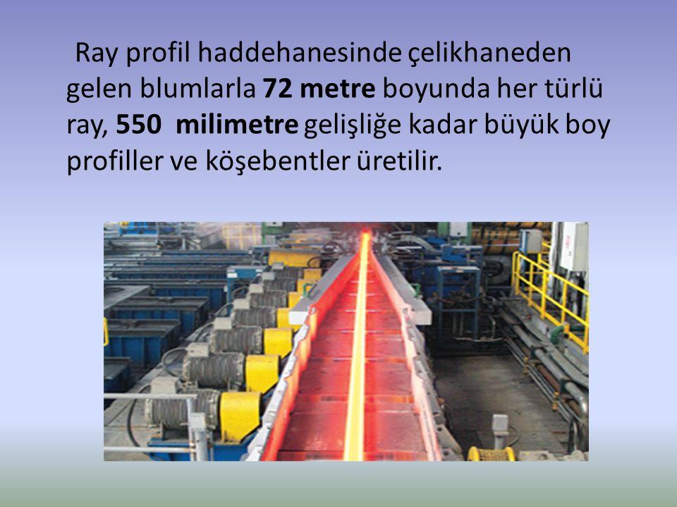 Ray profil haddehanesinde çelikhaneden gelen blumlarla 72 metre boyunda her türlü ray, 550 milimetre gelişliğe kadar büyük boy profiller ve köşebentler üretilir.
