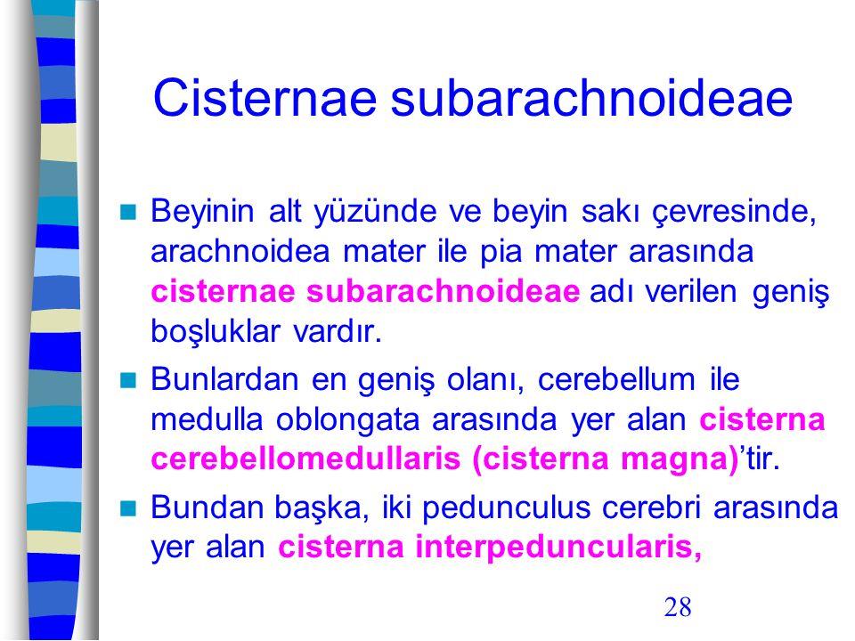 Cisternae subarachnoideae