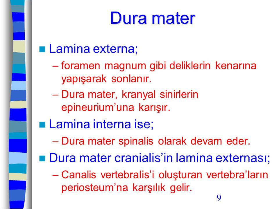 Dura mater Lamina externa; Lamina interna ise;