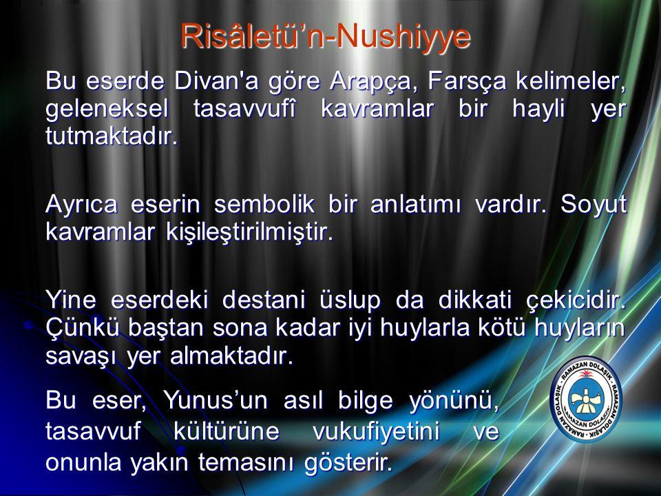 Risâletü'n-Nushiyye Bu eserde Divan a göre Arapça, Farsça kelimeler, geleneksel tasavvufî kavramlar bir hayli yer tutmaktadır.