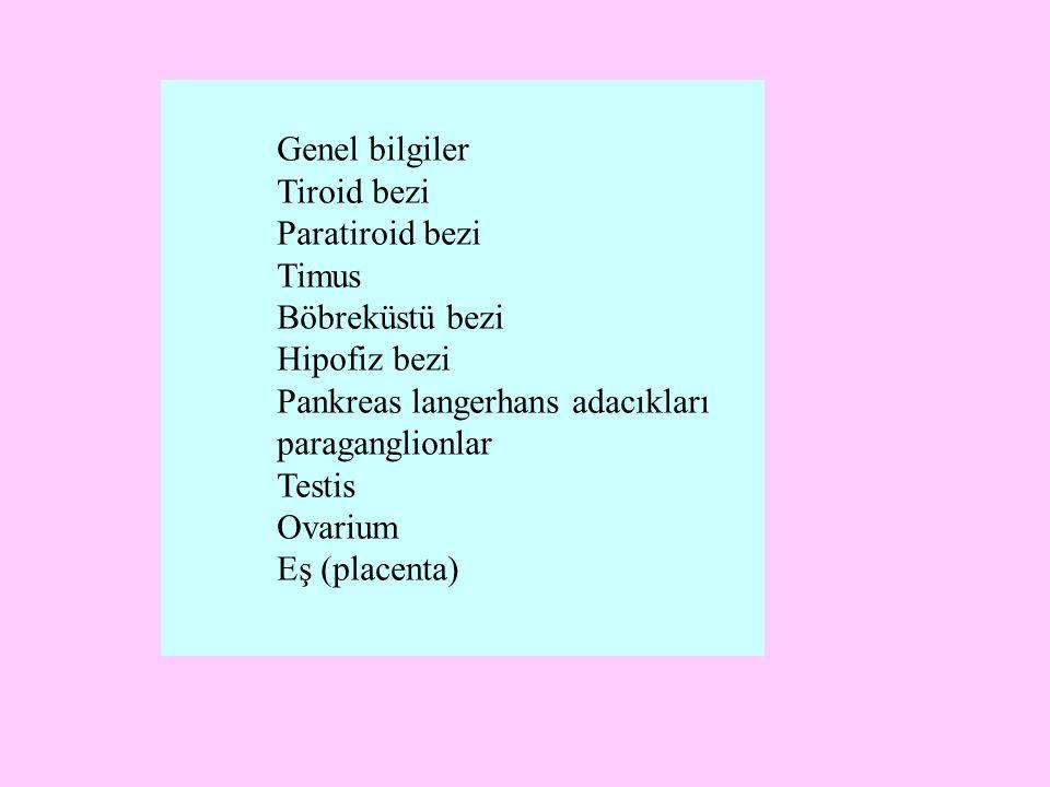 Genel bilgiler Tiroid bezi. Paratiroid bezi. Timus. Böbreküstü bezi. Hipofiz bezi. Pankreas langerhans adacıkları.