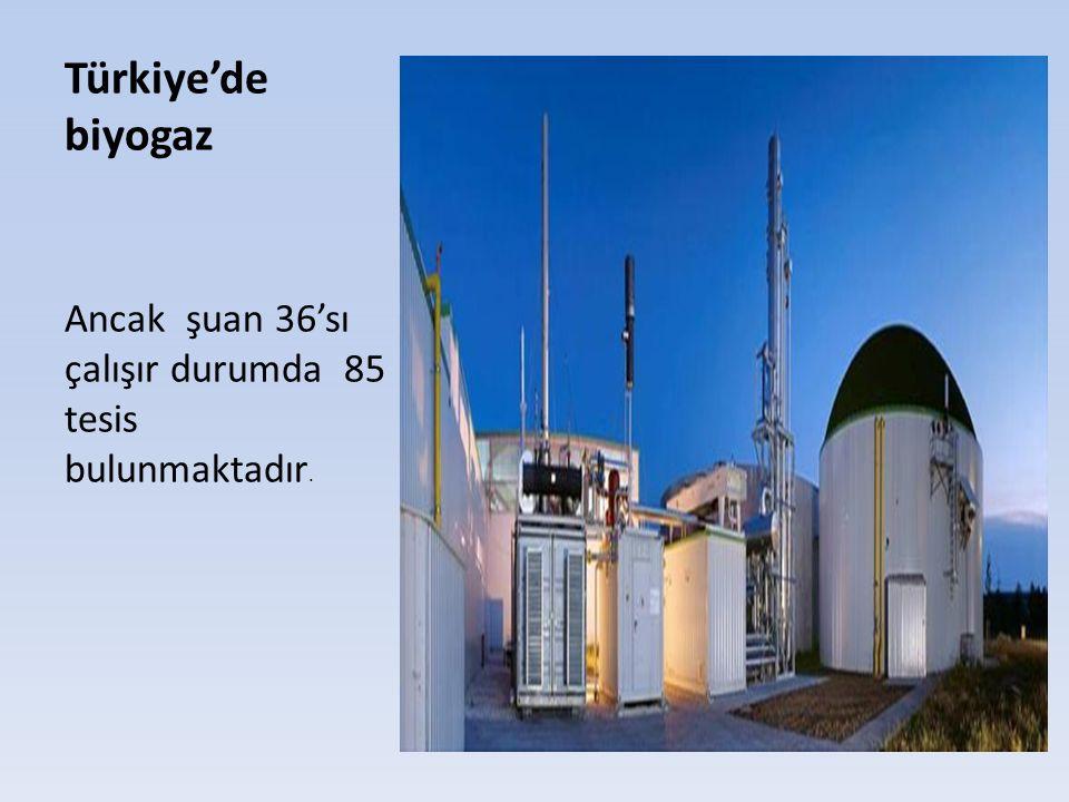 Türkiye'de biyogaz Ancak şuan 36'sı çalışır durumda 85 tesis bulunmaktadır.