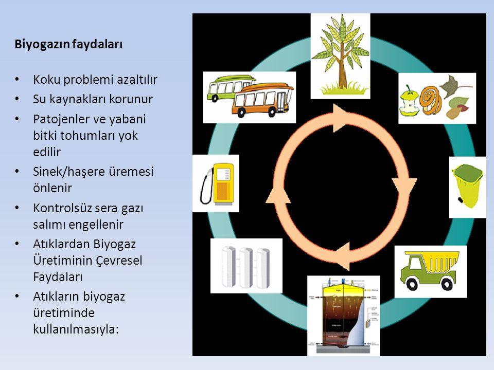 Biyogazın faydaları Koku problemi azaltılır. Su kaynakları korunur. Patojenler ve yabani bitki tohumları yok edilir.
