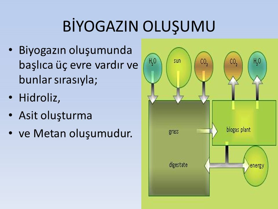 BİYOGAZIN OLUŞUMU Biyogazın oluşumunda başlıca üç evre vardır ve bunlar sırasıyla; Hidroliz, Asit oluşturma.