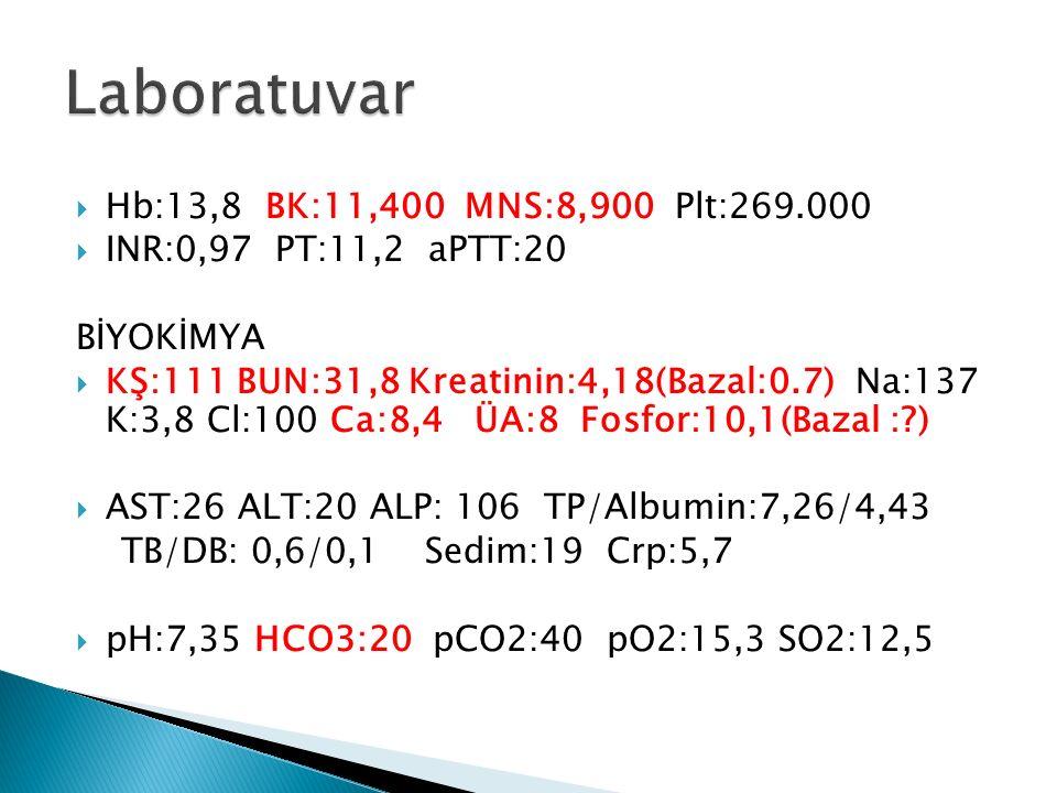 Laboratuvar Hb:13,8 BK:11,400 MNS:8,900 Plt:269.000