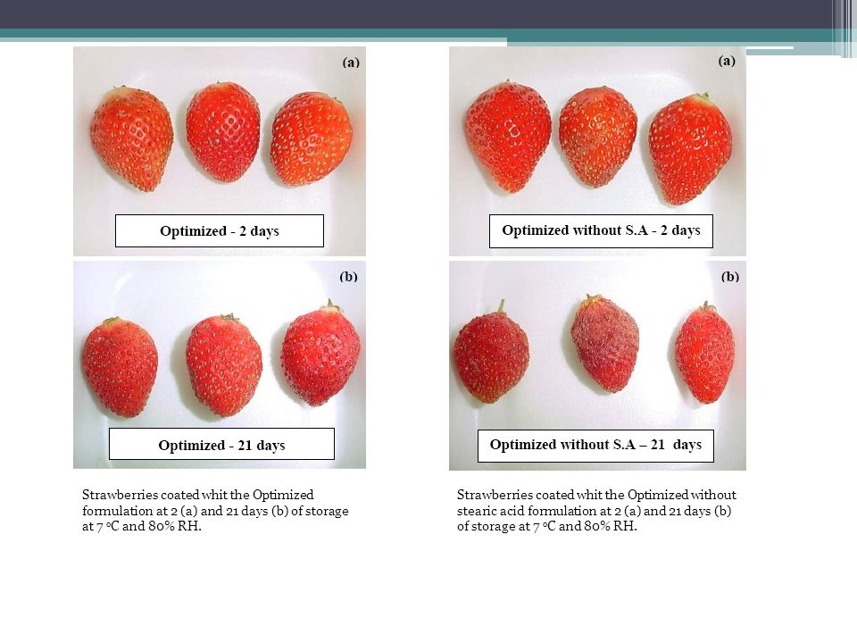 Strawberries coated whit the Optimized formulation at 2 (a) and 21 days (b) of storage at 7 oC and 80% RH.