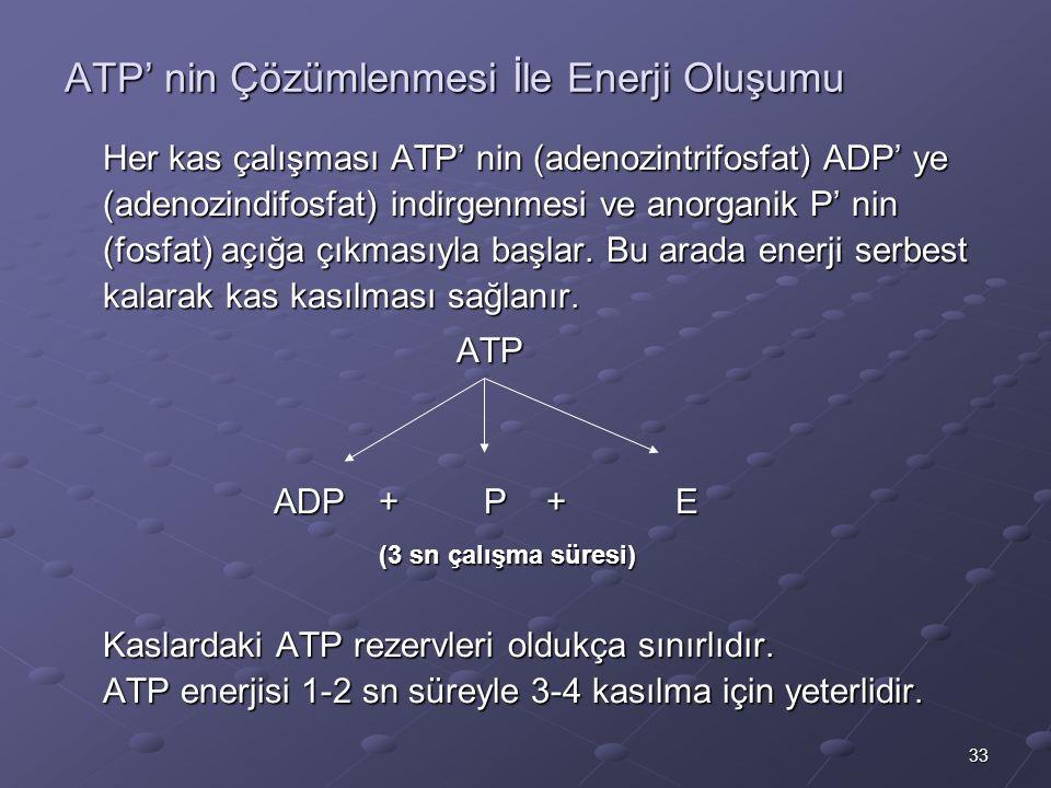 ATP' nin Çözümlenmesi İle Enerji Oluşumu
