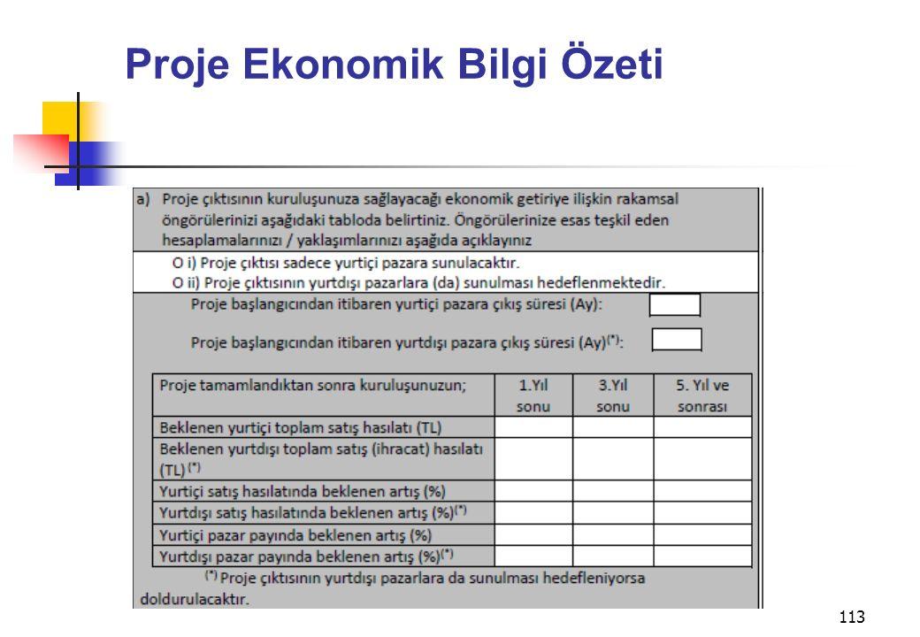 Proje Ekonomik Bilgi Özeti