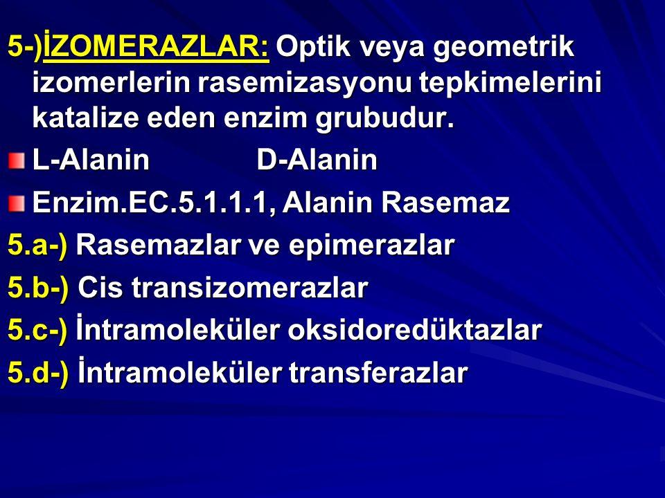5-)İZOMERAZLAR: Optik veya geometrik izomerlerin rasemizasyonu tepkimelerini katalize eden enzim grubudur.
