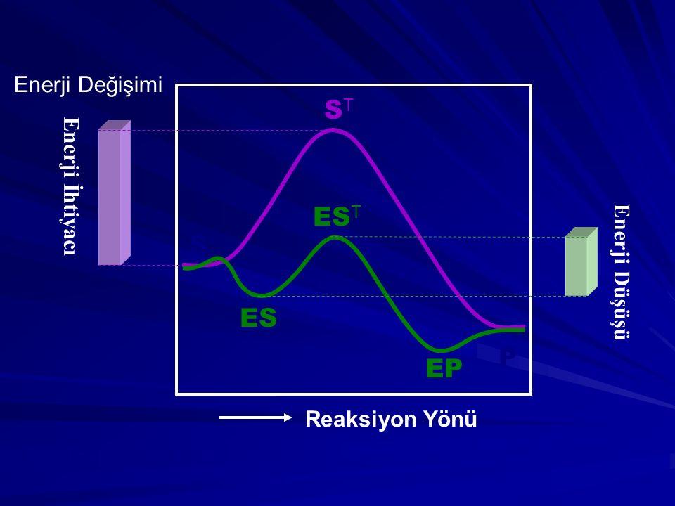 ST EST S ES P EP Enerji Değişimi Enerji İhtiyacı Enerji Düşüşü