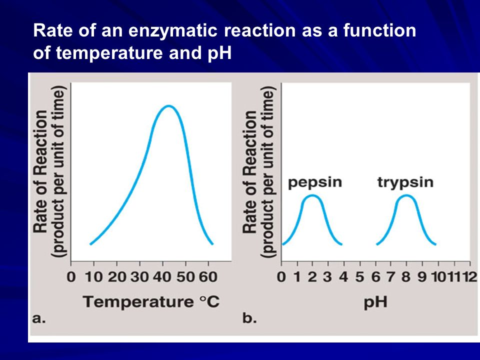Rate of an enzymatic reaction as a function of temperature and pH