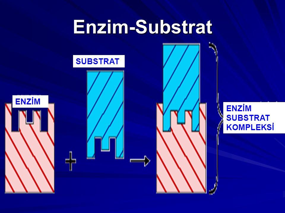 Enzim-Substrat SUBSTRAT ENZİM ENZİM SUBSTRAT KOMPLEKSİ