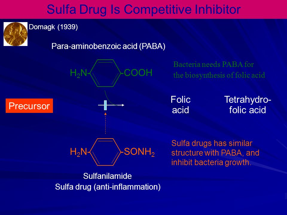 Sulfa Drug Is Competitive Inhibitor