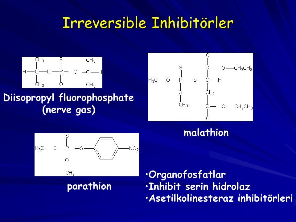 Irreversible Inhibitörler