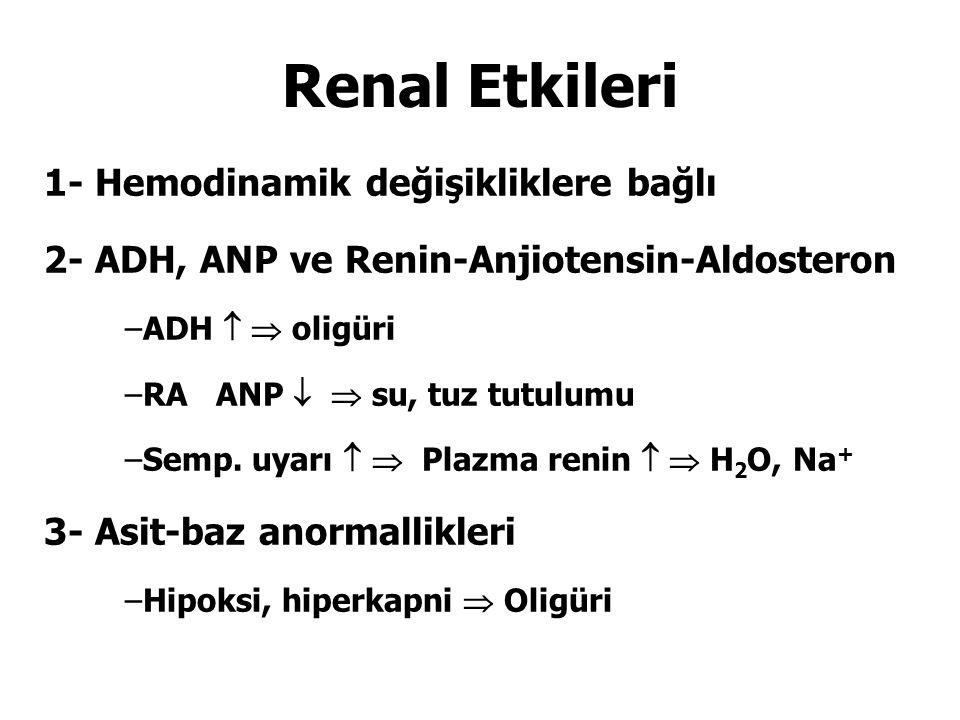Renal Etkileri 1- Hemodinamik değişikliklere bağlı