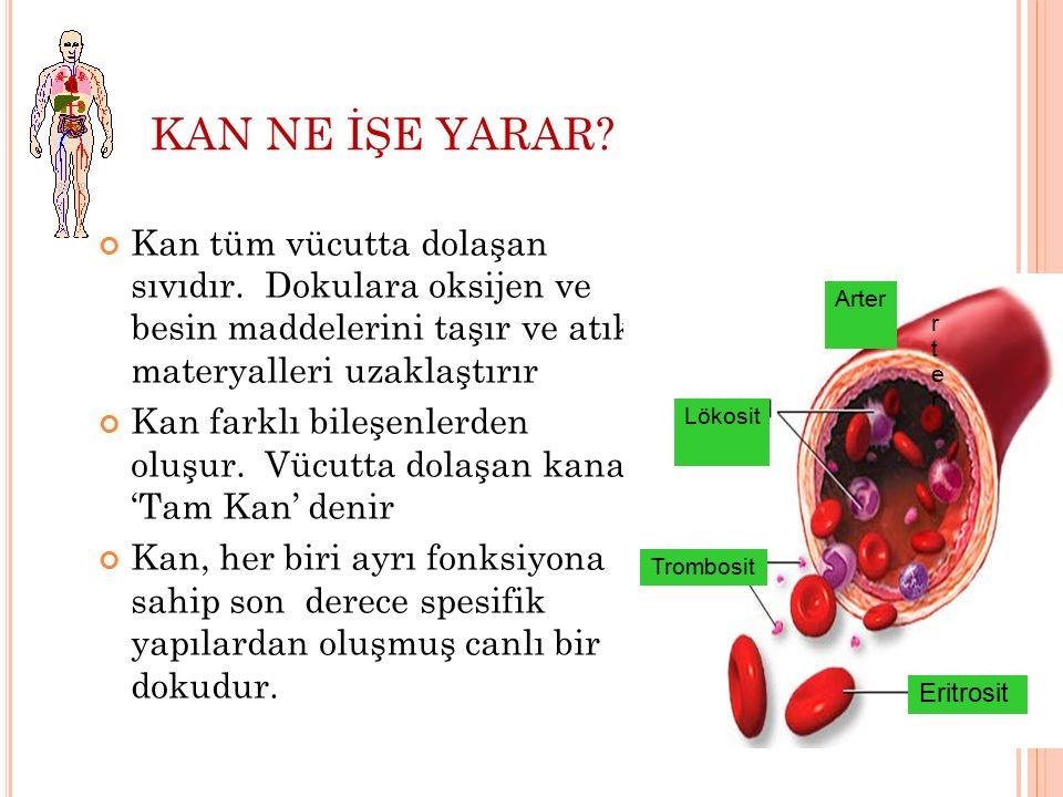 KAN NE İŞE YARAR Kan tüm vücutta dolaşan sıvıdır. Dokulara oksijen ve besin maddelerini taşır ve atık materyalleri uzaklaştırır.