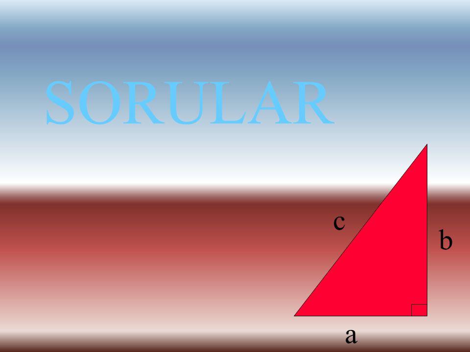 SORULAR a b c