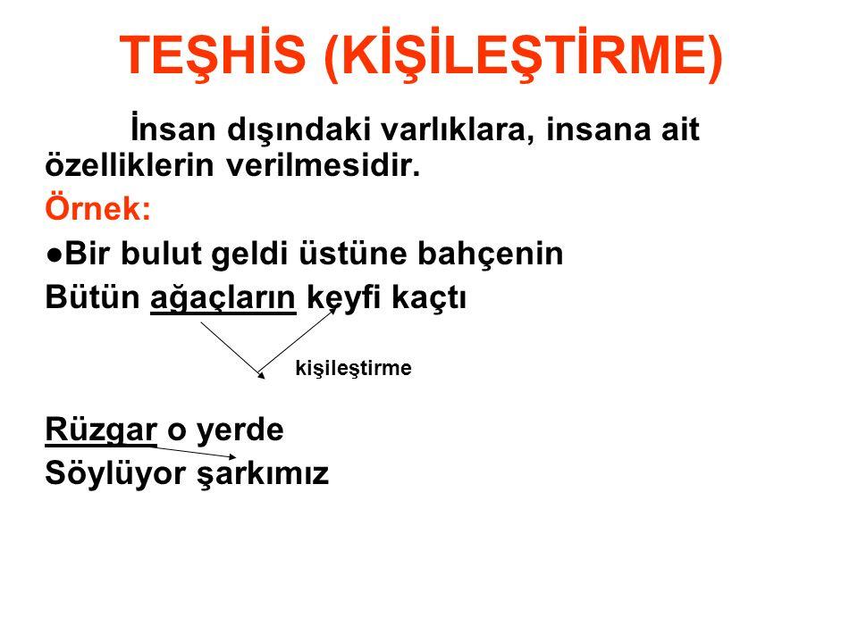 TEŞHİS (KİŞİLEŞTİRME)