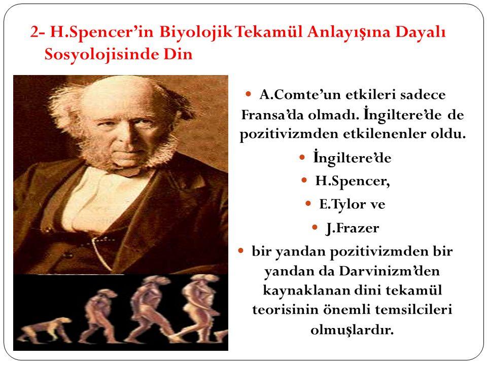 2- H.Spencer'in Biyolojik Tekamül Anlayışına Dayalı Sosyolojisinde Din