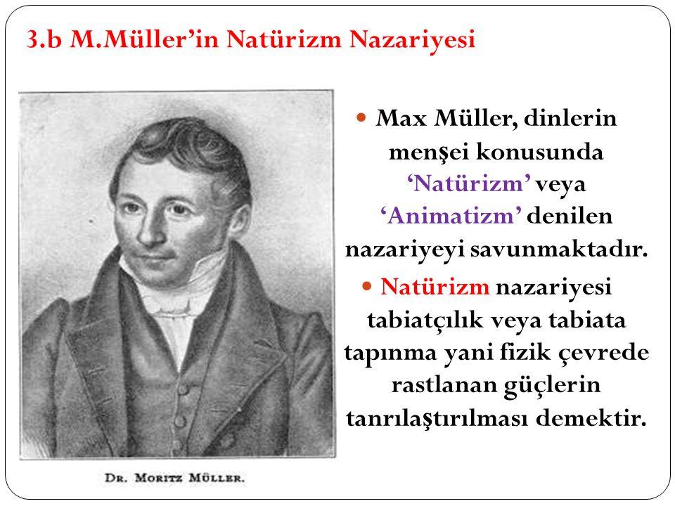3.b M.Müller'in Natürizm Nazariyesi