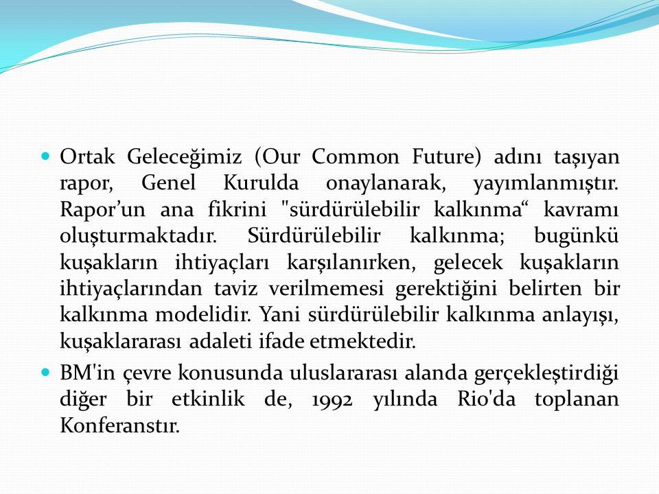 Ortak Geleceğimiz (Our Common Future) adını taşıyan rapor, Genel Kurulda onaylanarak, yayımlanmıştır. Rapor'un ana fikrini sürdürülebilir kalkınma kavramı oluşturmaktadır. Sürdürülebilir kalkınma; bugünkü kuşakların ihtiyaçları karşılanırken, gelecek kuşakların ihtiyaçlarından taviz verilmemesi gerektiğini belirten bir kalkınma modelidir. Yani sürdürülebilir kalkınma anlayışı, kuşaklararası adaleti ifade etmektedir.