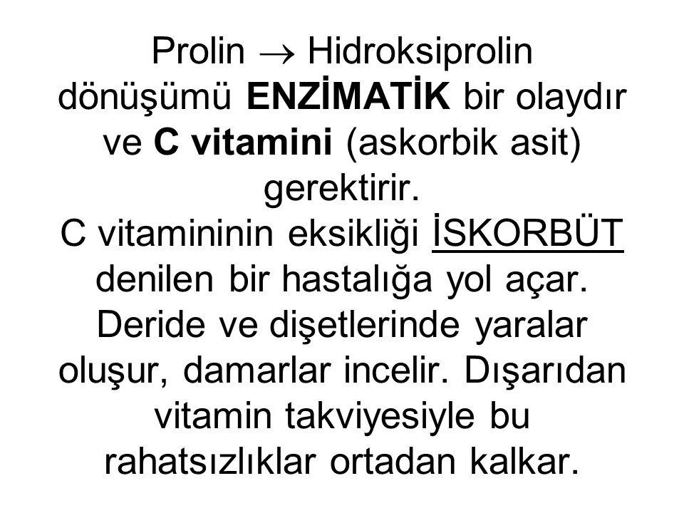 Prolin  Hidroksiprolin dönüşümü ENZİMATİK bir olaydır ve C vitamini (askorbik asit) gerektirir.