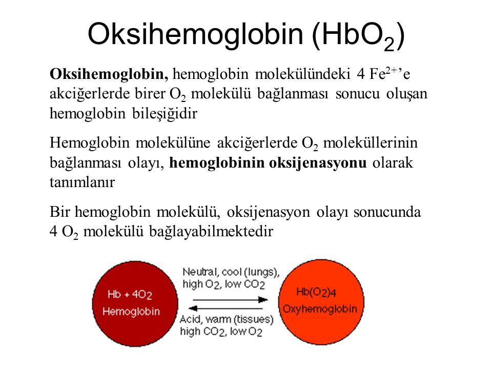 Oksihemoglobin (HbO2)
