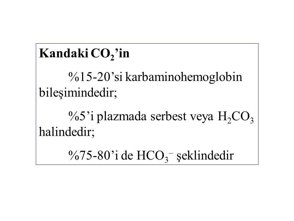 Kandaki CO2'in %15-20'si karbaminohemoglobin bileşimindedir; %5'i plazmada serbest veya H2CO3 halindedir;