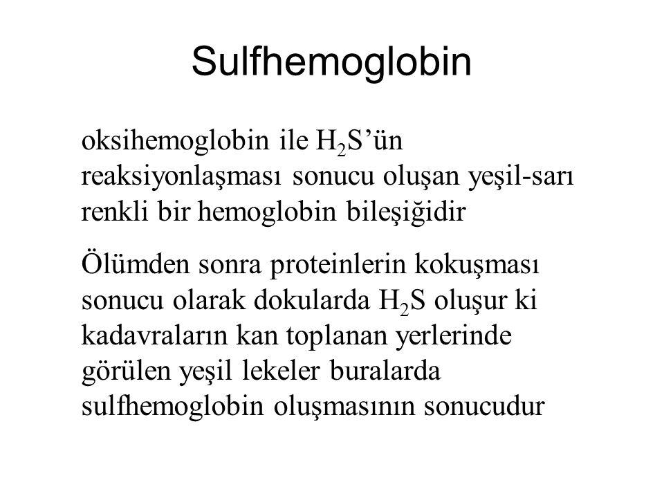 Sulfhemoglobin oksihemoglobin ile H2S'ün reaksiyonlaşması sonucu oluşan yeşil-sarı renkli bir hemoglobin bileşiğidir.