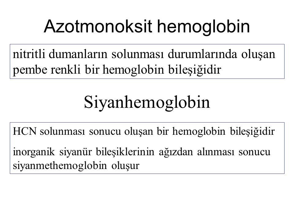 Azotmonoksit hemoglobin