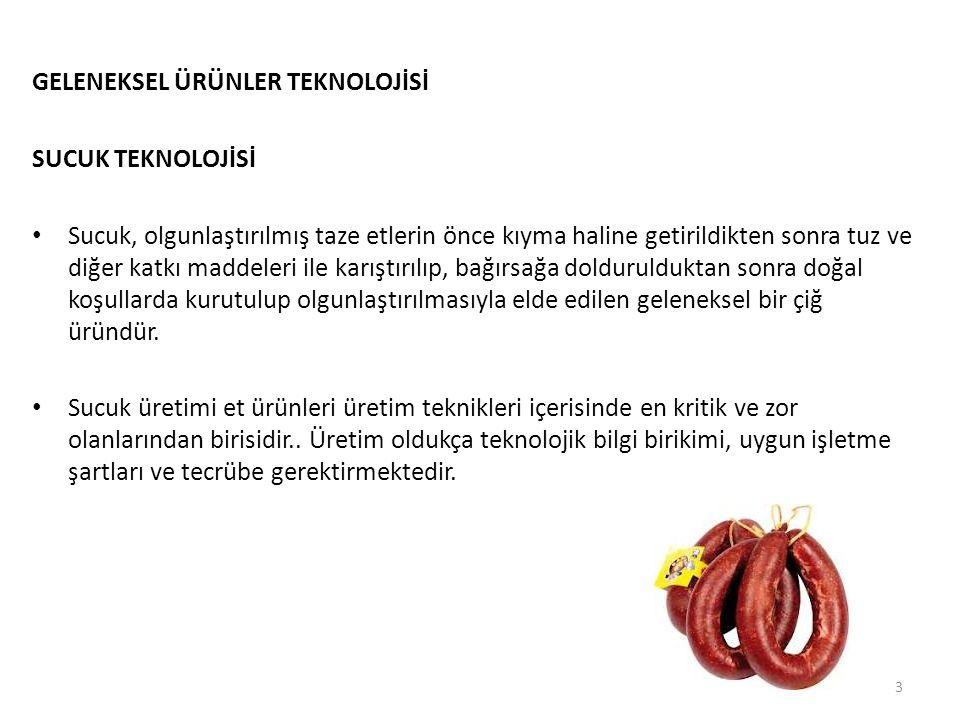 GELENEKSEL ÜRÜNLER TEKNOLOJİSİ